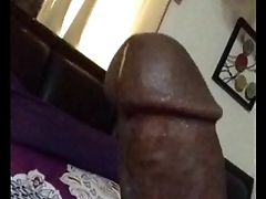 Gay houston texas cum pest - nsfw